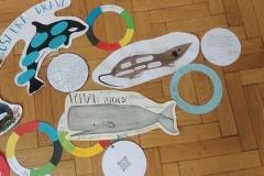 Savci-pod-olympijskými-kruhy-08