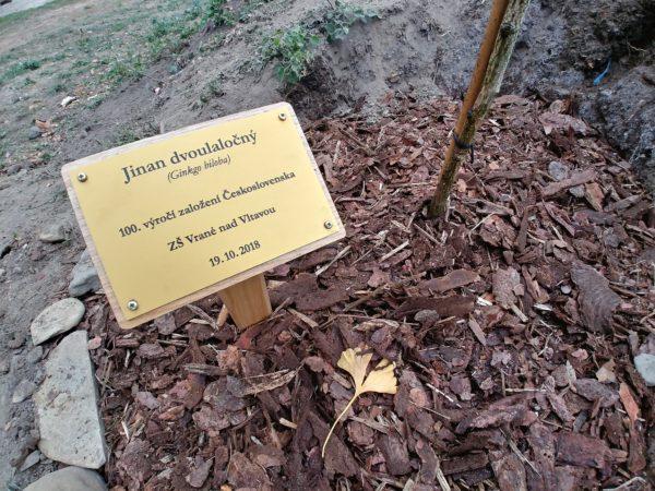 Slavnostní zasazení památného stromu