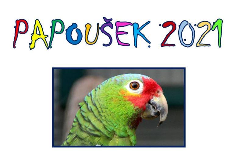 Papoušek ve škole